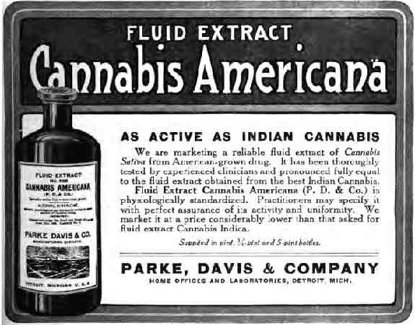 what-is-a-cannabis-tincture-7